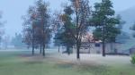 Mist in the autumn